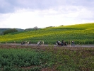 Himmelfahrtswanderung 2008