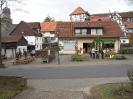 Osterbaumaktion 2009